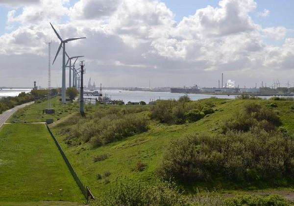 Project mainport Rotterdam